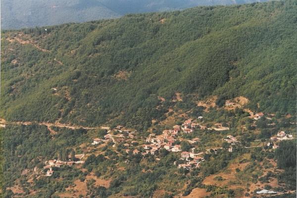 village15CF5DD6F-8EFB-5B68-35CF-9B77D29002B6.jpg